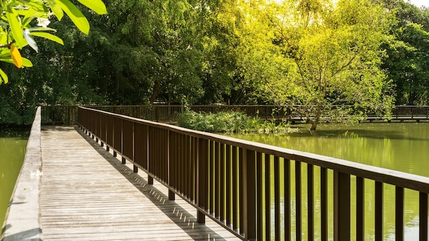 La passerella del ponte di legno nel parco e nel giardino botanico di sri nakhon khuean khan è un parco pubblico e dichiarato essere i polmoni di bangkok nel sottodistretto di bang kachao, samut prakan, thailandia, aggiungendo luce