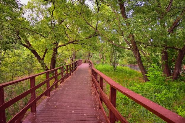 Ponte in legno marrone nel parco, parco autunnale, sentiero in legno, percorso a distanza, piattaforma forestale, ringhiera in legno, parco autunnale