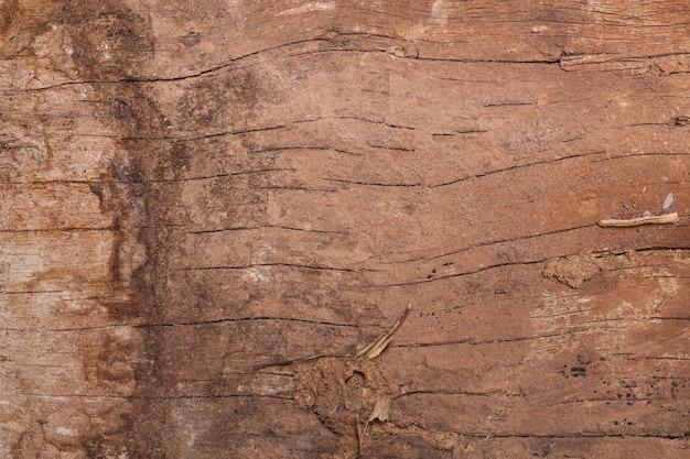 Texture di sfondo incrinato in legno