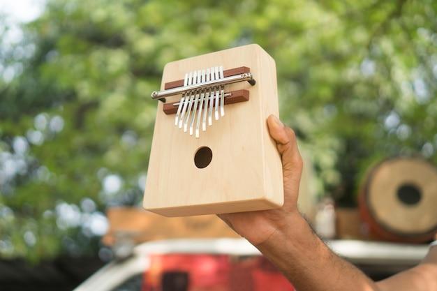 Strumento di legno etnico africano kalimba Foto Premium