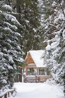 Gazebo in legno nel bosco in inverno. il sentiero per la casa