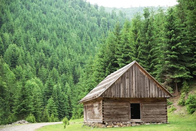 Casa in legno nella foresta di montagna