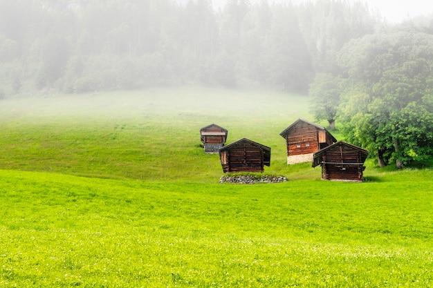 Case di legno nei campi verdi delle colline delle alpi svizzere un giorno nebbioso