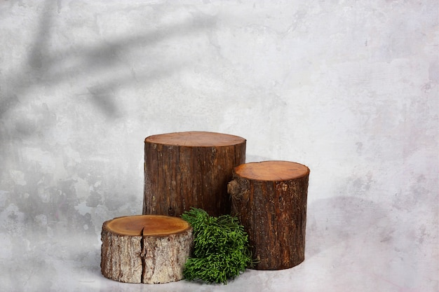 Fette di registro in legno e foglia di pino con sfondo di cemento
