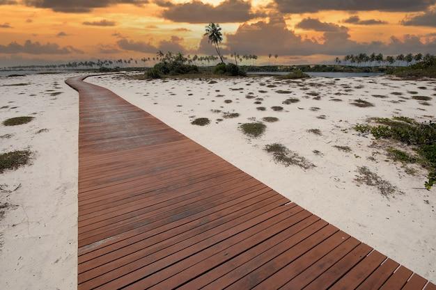 Percorso di legno sull'isola di costa do sauipe nella costa di bahia - brasile nordorientale.