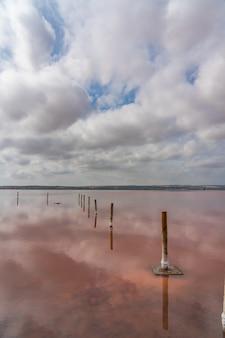 Pali di legno nel lago salato rosa con riflesso sull'acqua dalle nuvole, laguna rosa, torrevieja, verticale