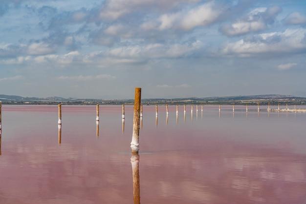 Pali di legno nel lago salato rosa con riflesso sull'acqua dalle nuvole, laguna rosa, torrevieja