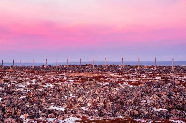 Pali di legno della barriera di neve paesaggio montano con tundra