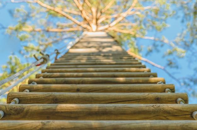 Scala di corda di legno attaccata a un albero alto in un parco estremo.