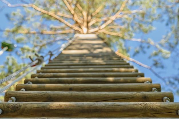 Scala di corda in legno attaccata a un albero alto