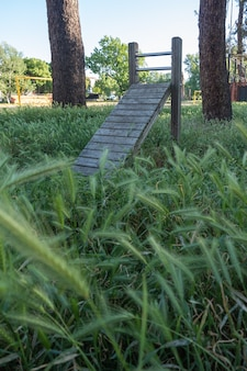Tavola da ginnastica in legno nel parco boschivo