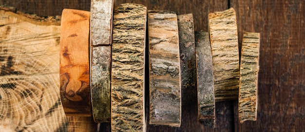 Fuoriuscite di legno. tagli di un albero.