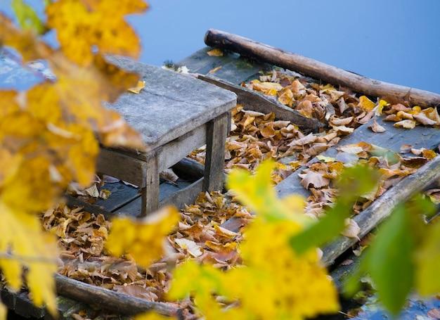 Sgabello in legno foglie cadute angolo vecchi supporti