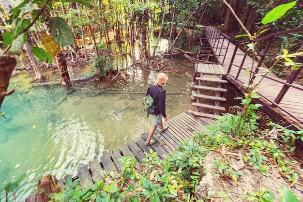 Passerella in legno nella giungla lungo le cascate in thailandia. bellissimi paesaggi asiatici.
