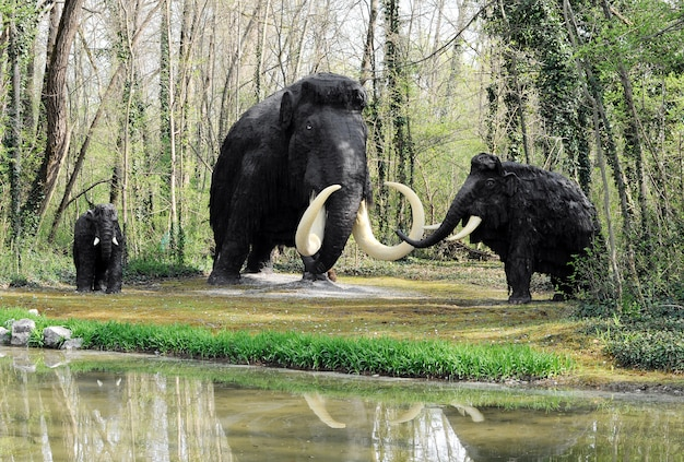 Wooly mammoth family vicino a shoreline