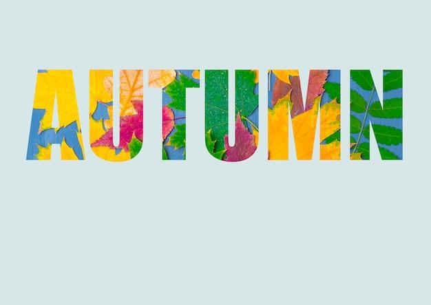 La parola autunno composta da foglie autunnali luminose e colorate di piante diverse, isolate su uno sfondo blu pastello. calendario autunnale. sfondo autunnale luminoso