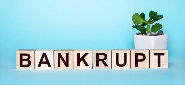 La parola bankrupt è scritta su cubi di legno vicino a un fiore in un vaso su una superficie azzurra