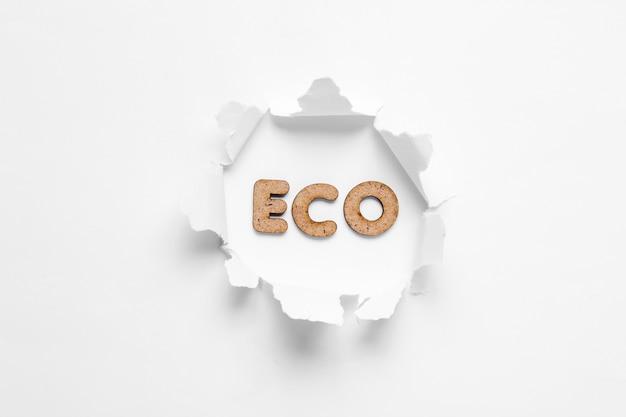 Parola eco in un buco lacerato isolato su bianco