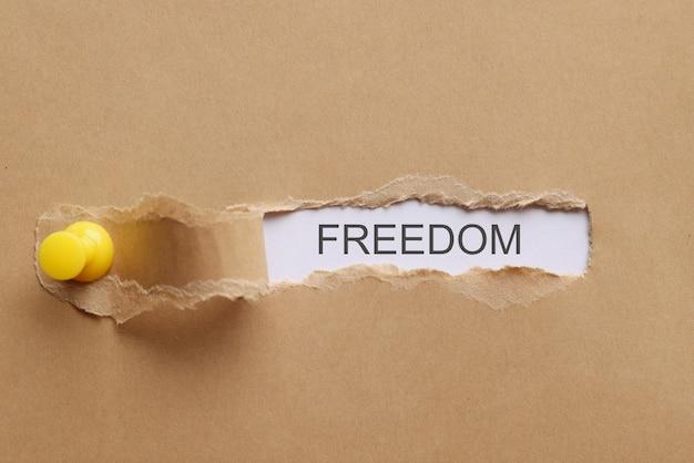 La libertà di parola è scritta sul primo piano strappato del pezzo di carta