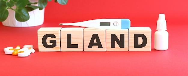La parola gland è composta da cubi di legno su un tavolo rosso con farmaci. concetto medico.