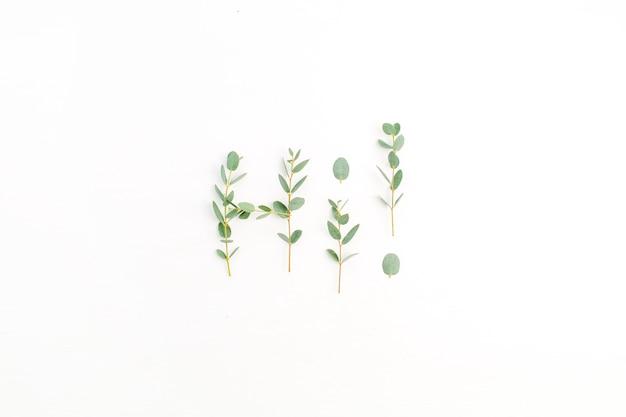 Parola ciao fatta di ramo di eucalipto su sfondo bianco. disposizione piatta, vista dall'alto