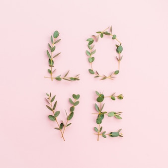 Parola amore fatta di rami di eucalipto su sfondo rosa. disposizione piana, vista dall'alto.
