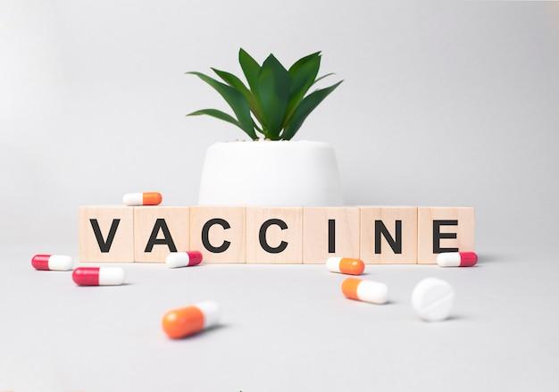 Vaccino di parola composto da lettere in legno su sfondo grigio.