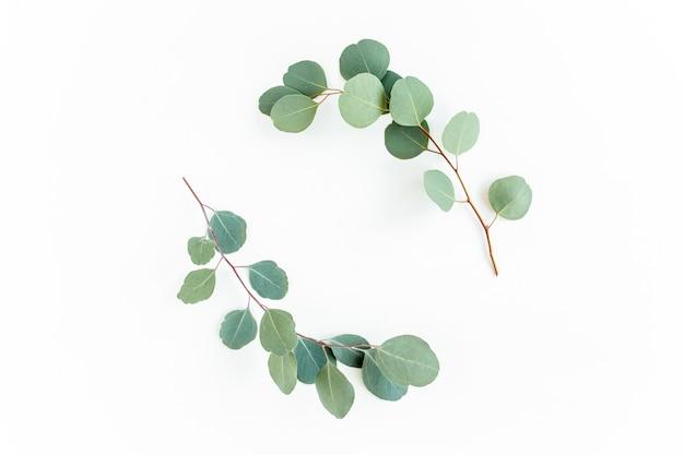 Cornice ghirlanda fatta di rami di eucalipto e foglie