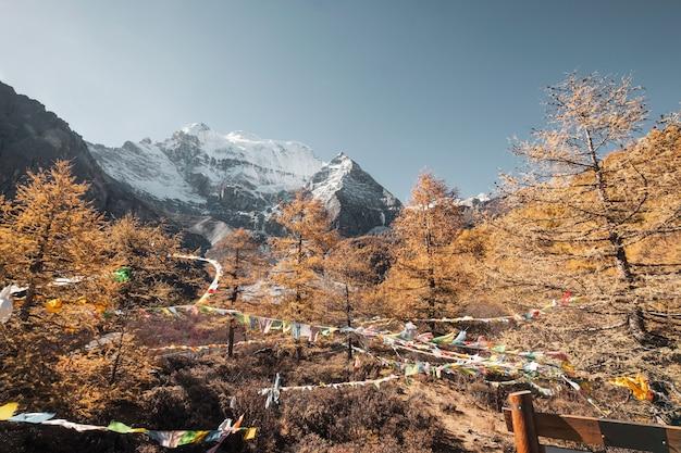 Montagna sacra di xiannairi con foresta autunnale e bandiere di preghiera che soffia nella riserva naturale di yading