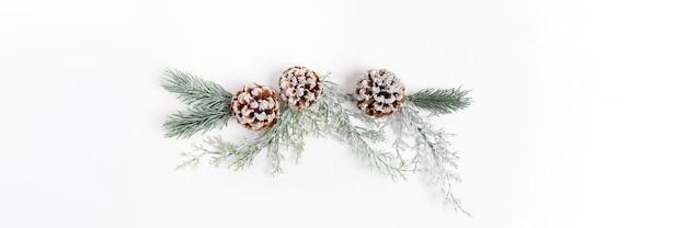 Striscione festivo di natale con decorazioni natalizie riutilizzabili fatte di rami di alberi e pigne su bianco