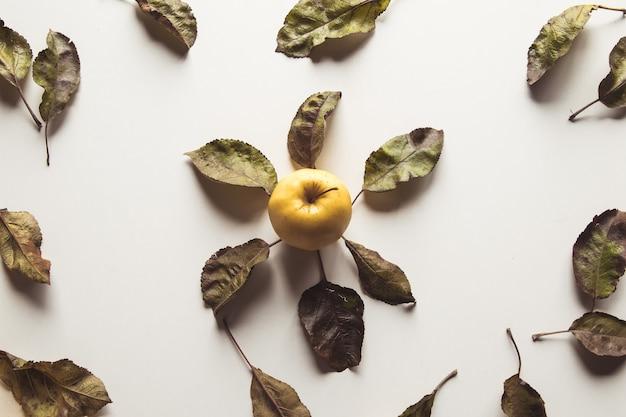Mele gialle su sfondo bianco con foglie vecchie, cibo sano, agricoltura, vegetarianismo