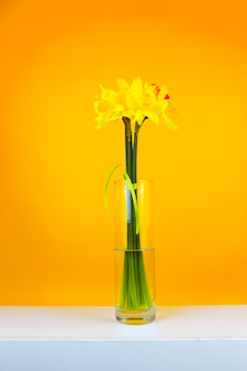 Un mazzo di fiori giallo in un vaso di vetro si trova su un tavolo su uno sfondo giallo, foto verticale vertical