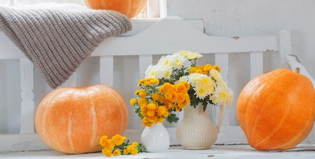 Crisantemi gialli in brocca e zucche arancioni sul vecchio banco di legno bianco