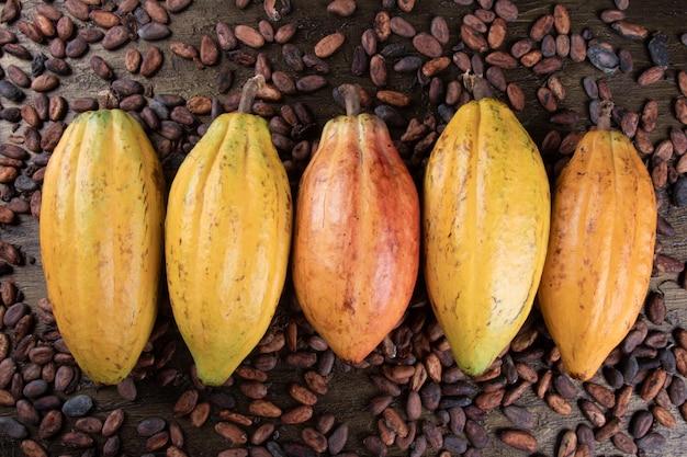 Frutti di cacao giallo con vista dall'alto di fave di cacao crudo.