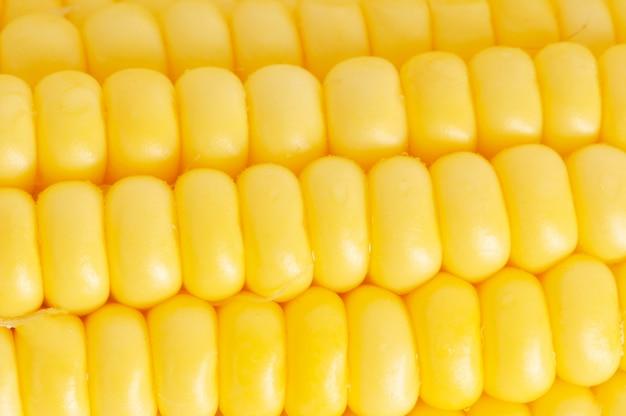 Primo piano giallo della pannocchia