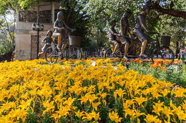 Fiore di fioritura giallo di lilly nel giardino