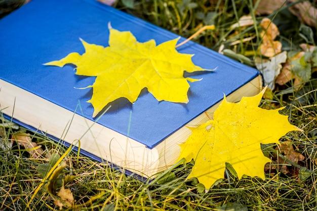 Foglie di acero gialle su un libro con una copertina blu sull'erba nel bosco_