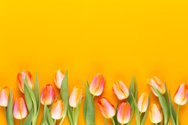 I pastelli gialli colorano i fiori su fondo giallo. aspettando la primavera. carta di buona pasqua. vista piana laico e dall'alto. copia spazio.