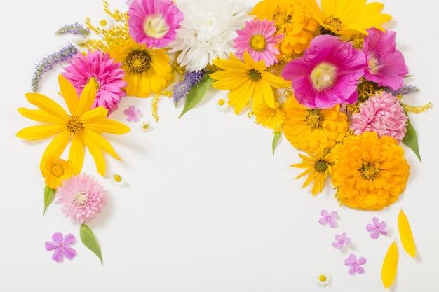 Fiori gialli e rosa su sfondo bianco