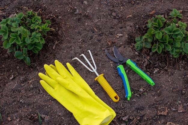 Un rastrello giallo, guanti da giardino gialli e un potatore verde