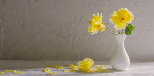 Rose gialle in vaso bianco sulla parete parete bianca