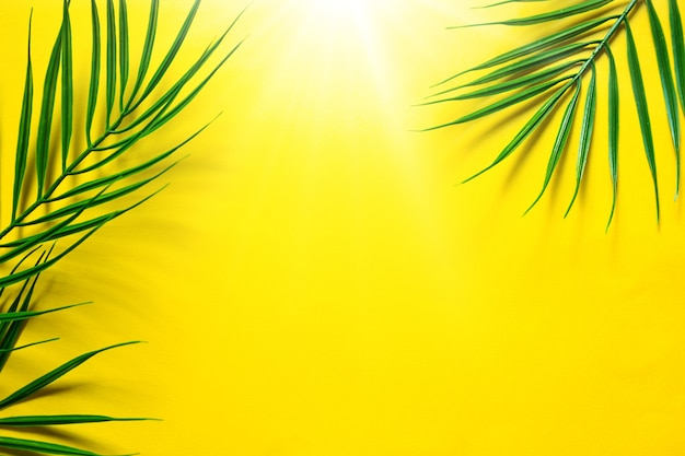Sfondo estivo giallo con foglie di palma: il tema della spiaggia, delle vacanze tropicali, del sole caldo. cornice, copia spazio.