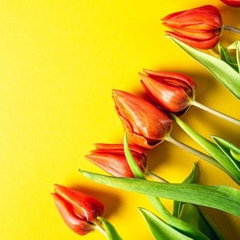 Superficie gialla con tulipani arancioni, pasqua. compleanno, concetto di cartolina d'auguri festa della mamma con lo spazio della copia. vista dall'alto, piatto