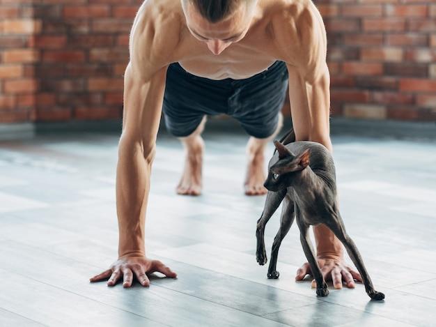 Allenamento yoga per muscoli forti e tonici. posa della plancia. corpo dell'uomo e del gatto sano e in forma. benessere sportivo e stile di vita atletico per persone e animali domestici.
