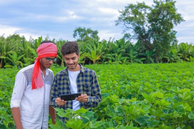 Il giovane agronomo tiene il computer tablet touch pad nel campo di cotone ed esamina i raccolti