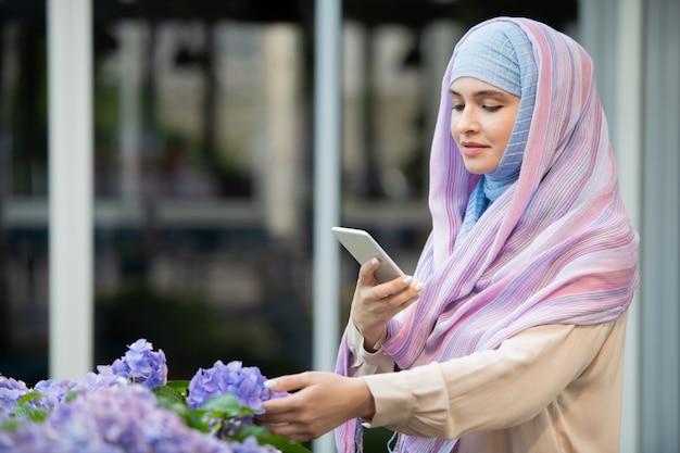 Giovane donna araba in hijab fotografando bella ortensia blu su smartphone all'aperto