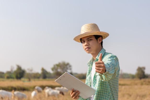 Giovane uomo asiatico del coltivatore che dà i pollici in su con sorridente e che tiene la lista di controllo della lavagna per appunti con le capre vaghe che mangiano erba nel campo