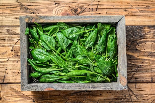 Giovani spinaci baby foglie in una fattoria scatola di legno