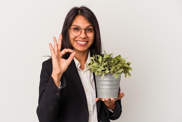 Giovane donna latina di affari che tiene le piante isolate su fondo bianco allegro e sicuro che mostra gesto giusto.
