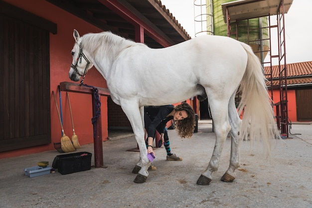 Giovane donna caucasica che pulisce e prepara un cavallo.